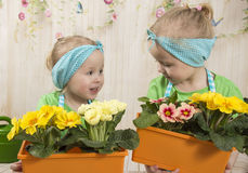 Girls twins of three years care for flowers, Royalty Free Stock Image