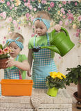 Girls twins of three years care for flowers, Royalty Free Stock Photos