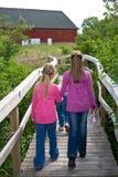 Girls walking. Stock Photos