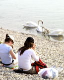 Girls watching swans on lake Stock Photo