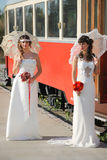 Girls in a wedding dresses Stock Image