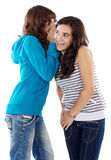 Girls whispering a secret. Two teenager girls whispering a secret to the ear royalty free stock photos