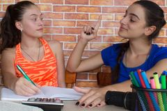 Girls work on his homework. Portrait of two pretty girls high school student studying royalty free stock image