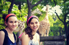 Girls at Zoo. Two girls enjoying a day at the zoo with giraffes behind them in the background Royalty Free Stock Photography
