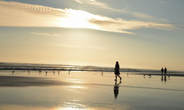 Girlwalking στην όμορφη παραλία Στοκ εικόνα με δικαίωμα ελεύθερης χρήσης
