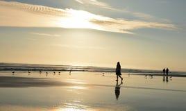 Girlwalking en la playa hermosa Imagen de archivo libre de regalías