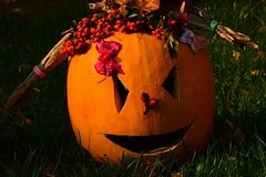 Girly carved gouged out pumpkin Hallowen Jack O Lantern lying with ponytails made of cornstalks and berries crown lying on lawn. Girly carved gouged out pumpkin Stock Photography