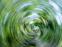 Giro abstracto de la naturaleza. Imagen de archivo