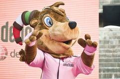GIro d'Italia: the mascot Girbecco. The official mascot Girbecco in Verona Arena at the end of Giro d'Italia 2010 Royalty Free Stock Photo