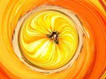 Giro de la calabaza Imagen de archivo libre de regalías