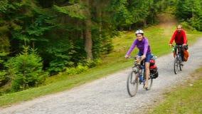 Giro dei ciclisti lungo il sentiero forestale video d archivio