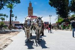 Giro del carretto e del cavallo Immagini Stock Libere da Diritti
