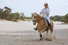 Giro del cavallo nelle dune immagine stock libera da diritti