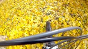 Giro del ciclista sulle foglie di autunno stock footage