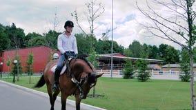 Giro del giovane sul cavallo nel parco archivi video