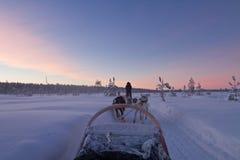 Giro del husky al tramonto Immagine Stock