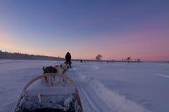Giro del husky al tramonto Immagini Stock Libere da Diritti