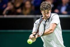 Giro del mondo di ATP di Robin Haase Fotografia Stock