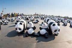 Giro del mondo di 1600 panda da WWF Immagine Stock Libera da Diritti