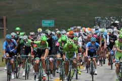 Giro del mugnaio 2014 di Larry dell'Utah 2 Fotografie Stock Libere da Diritti