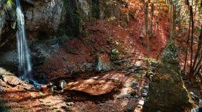 Giro del otoño Imagenes de archivo