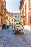 Giro del trasporto del cavallo di Cracovia (Cracovia) - Polonia Fotografia Stock Libera da Diritti
