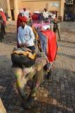 Giro dell'elefante Fotografia Stock