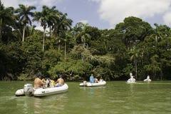 Giro della barca di fiume di Belize che cerca fauna selvatica Fotografie Stock Libere da Diritti