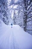 Giro dello sci nella foresta leggiadramente di inverno fotografie stock libere da diritti