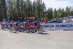 Giro di Amegen di California - colline di EL Dorado -22 fotografia stock libera da diritti