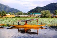 Giro di Shikata a Srinagar Fotografie Stock Libere da Diritti