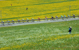 GIRO ITALIA Royalty Free Stock Photos