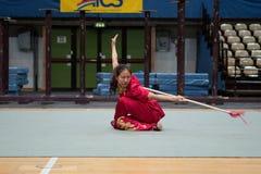 Giro italiano degli eroi 2010 di Kung Fu Immagini Stock Libere da Diritti