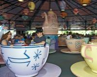 Giro pazzo del partito di tè di regno magico del Disney Fotografie Stock Libere da Diritti