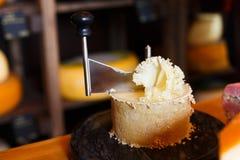 Girolle för ostcloseup Arkivfoton