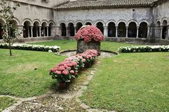 Girona flower time exposure Royalty Free Stock Photos