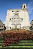 Girona kathedraal Stock Foto