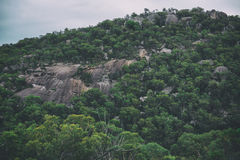 Girraween National Park Stock Image