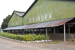 Gisakura tea factory Stock Images
