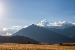 Gisement de céréale au fond de montagnes au jour ensoleillé Image stock
