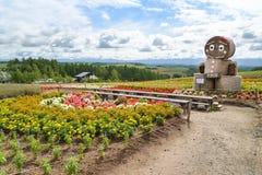 Gisement de fleur dans Biei, Hokkaido, Japon Photographie stock libre de droits