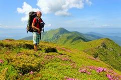Gisement de fleurs de marche de Trekker en montagne Photographie stock libre de droits
