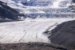 Gisement de glacier d'Athabasca et de glace de Colombie Images stock
