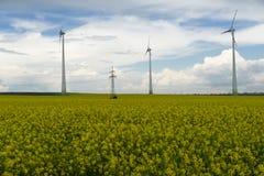 Gisement de graine de colza avec des moulins à vent photos stock