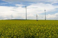 Gisement de graine de colza avec des moulins à vent Photo stock