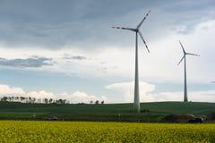 Gisement de graine de colza avec des moulins à vent Photographie stock libre de droits