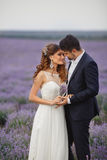 Gisement de lavande de mariage Images libres de droits