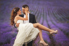 Gisement de lavande de mariage photographie stock libre de droits
