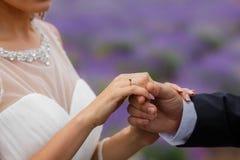 Gisement de lavande de mariage Photos libres de droits