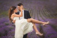 Gisement de lavande de mariage image libre de droits